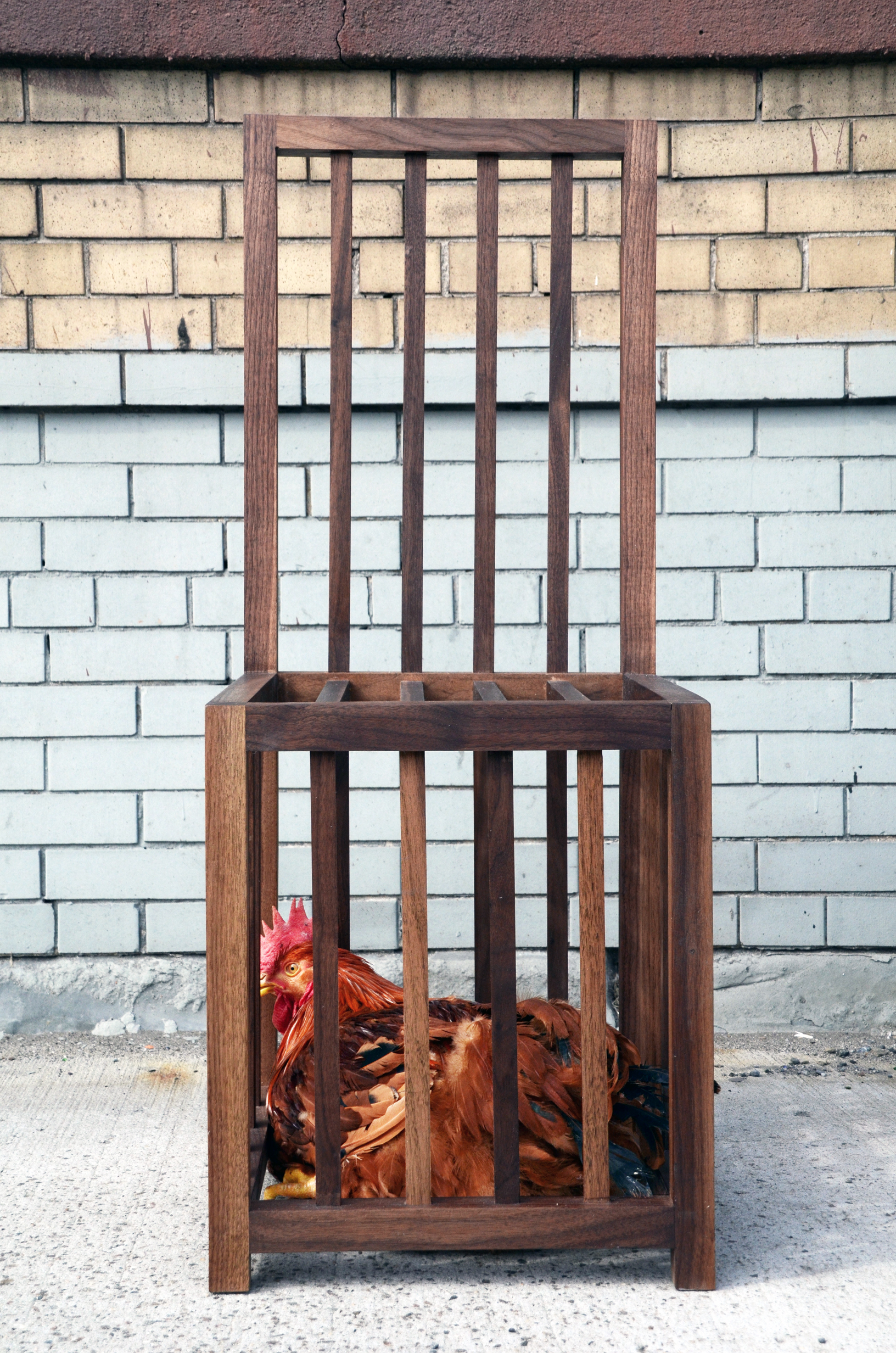 Chicken chair
